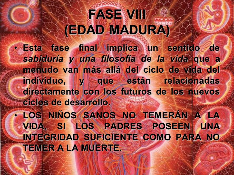 FASE VIII (EDAD MADURA)