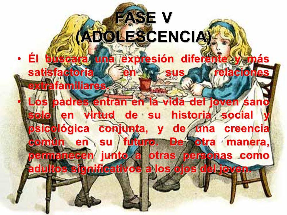 FASE V (ADOLESCENCIA)Él buscara una expresión diferente y más satisfactoria en sus relaciones extrafamiliares.