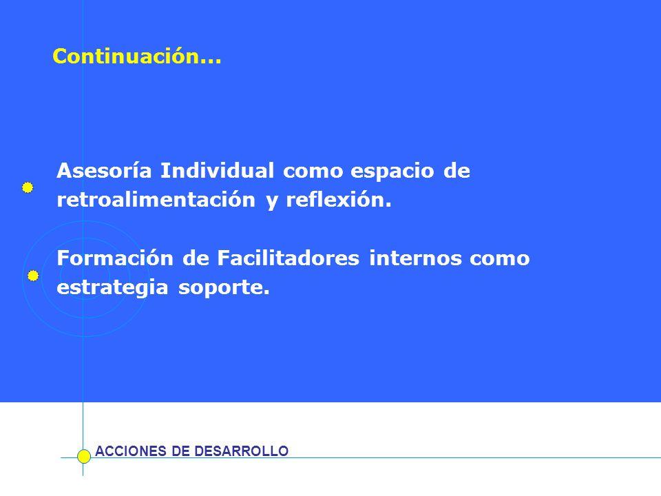 Asesoría Individual como espacio de retroalimentación y reflexión.