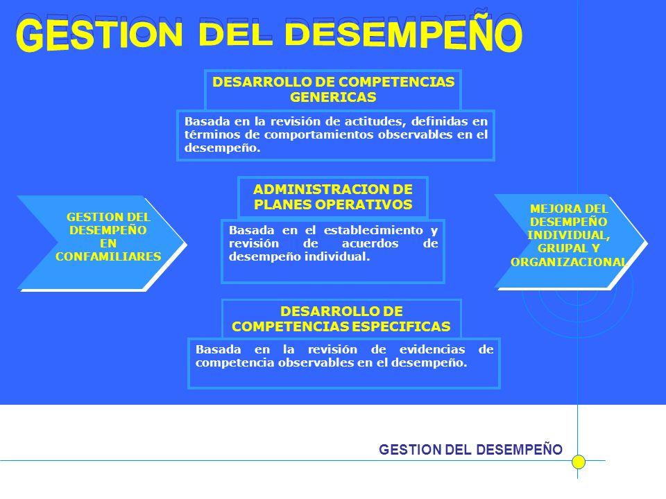 GESTION DEL DESEMPEÑO GESTION DEL DESEMPEÑO