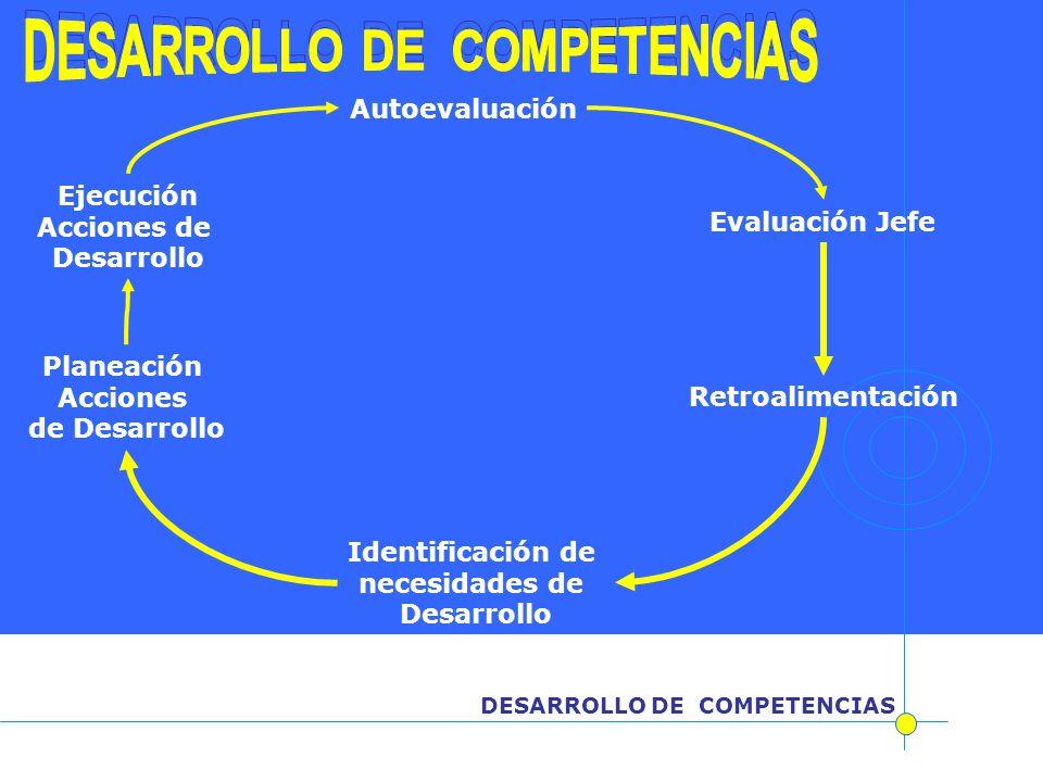 DESARROLLO DE COMPETENCIAS DESARROLLO DE COMPETENCIAS