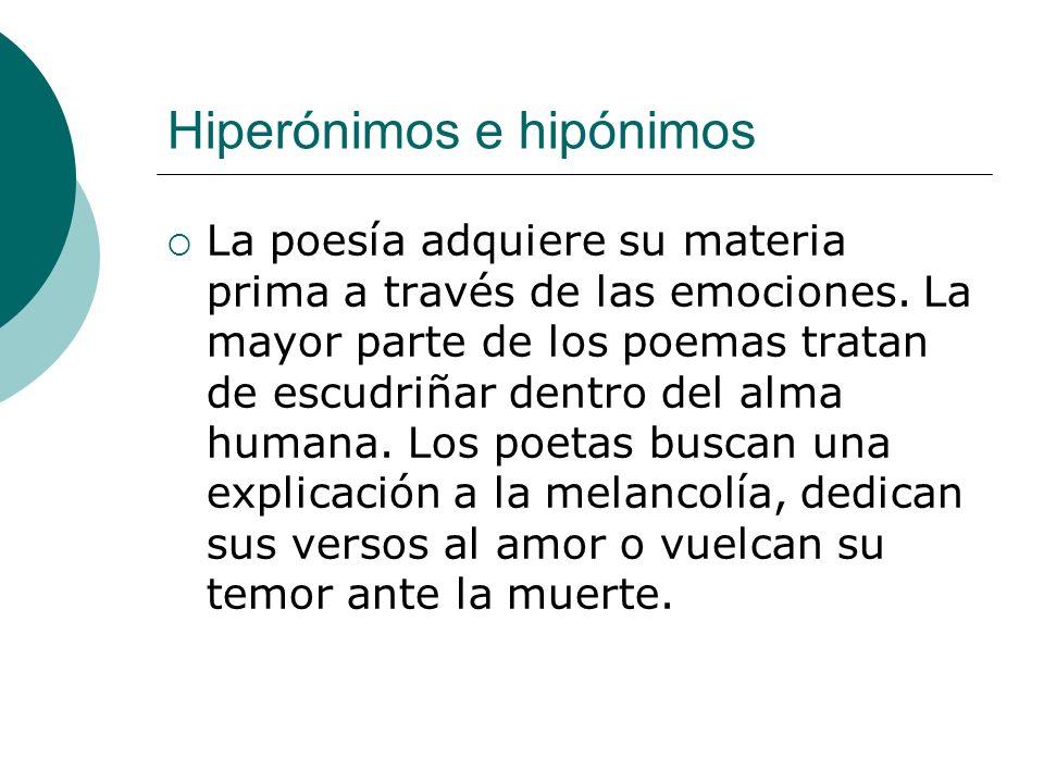 Hiperónimos e hipónimos