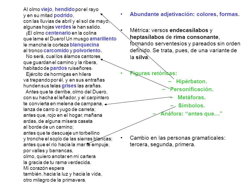 Abundante adjetivación: colores, formas.