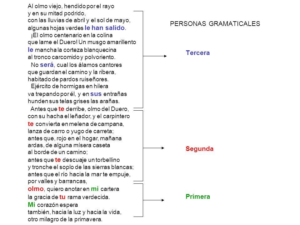 PERSONAS GRAMATICALES