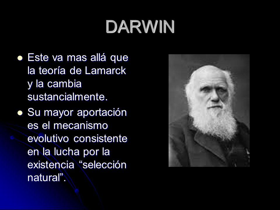 DARWIN Este va mas allá que la teoría de Lamarck y la cambia sustancialmente.