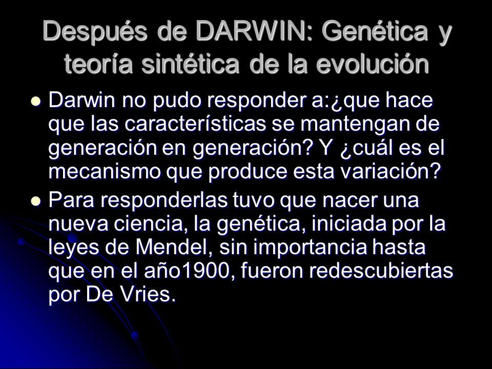 Después de DARWIN: Genética y teoría sintética de la evolución