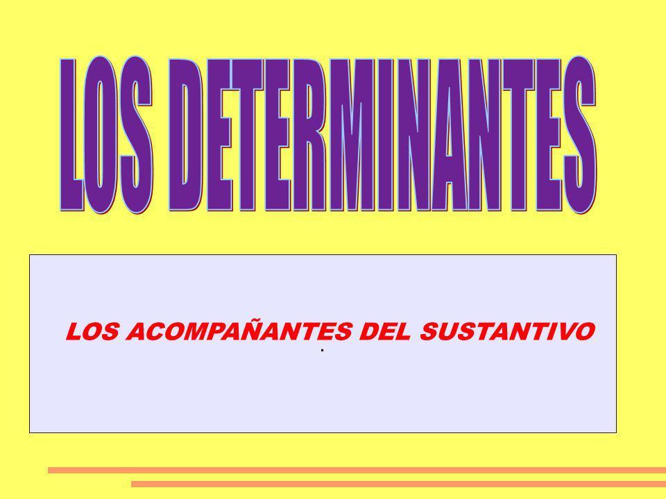 LOS DETERMINANTES . LOS ACOMPAÑANTES DEL SUSTANTIVO