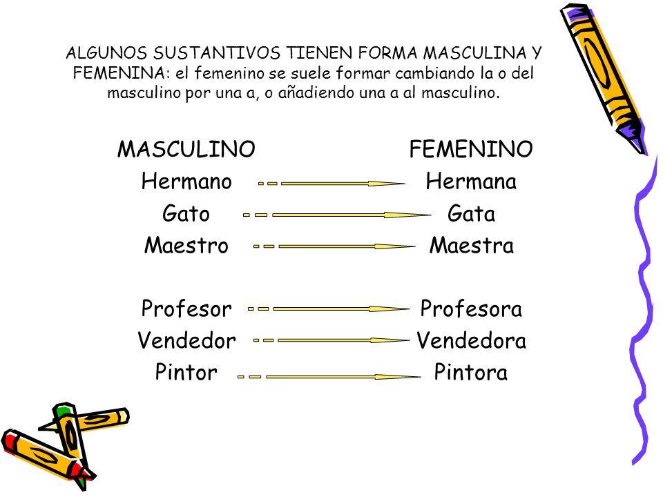 MASCULINO Hermano Gato Maestro Profesor Vendedor Pintor FEMENINO