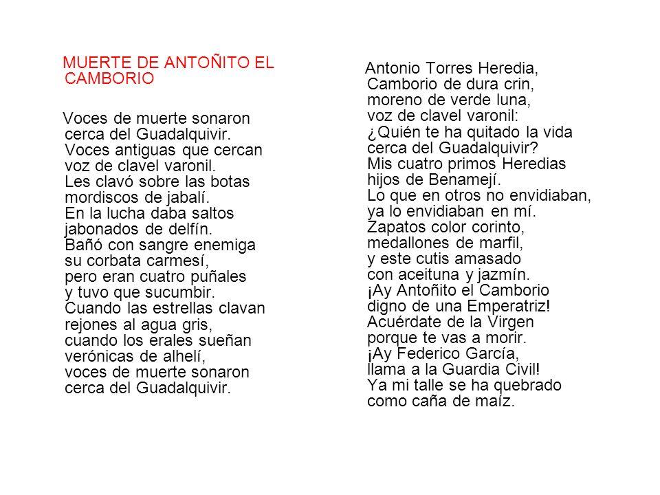 MUERTE DE ANTOÑITO EL CAMBORIO
