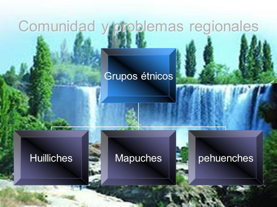 Comunidad y problemas regionales