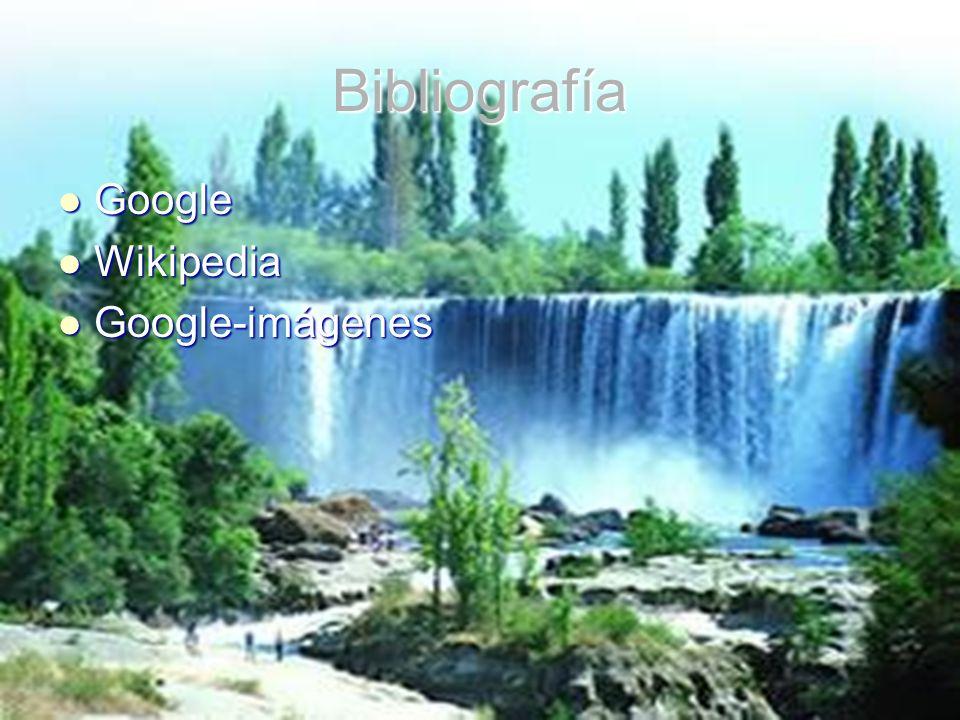 Bibliografía Google Wikipedia Google-imágenes