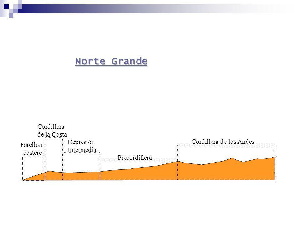 Norte Grande Cordillera de la Costa Depresión Cordillera de los Andes