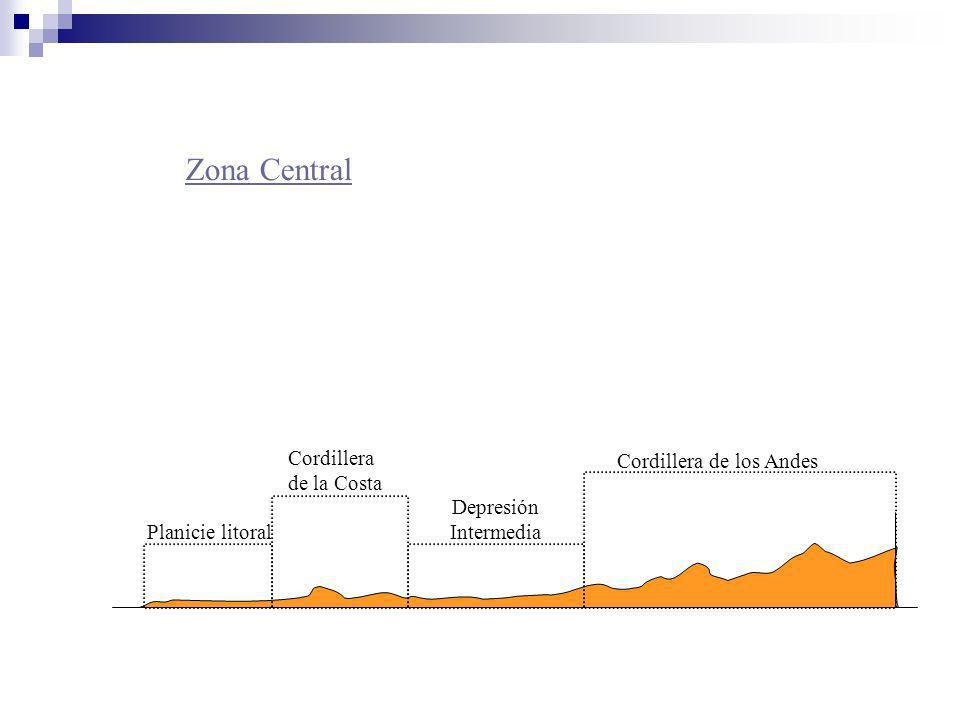 Zona Central Cordillera de la Costa Cordillera de los Andes Depresión