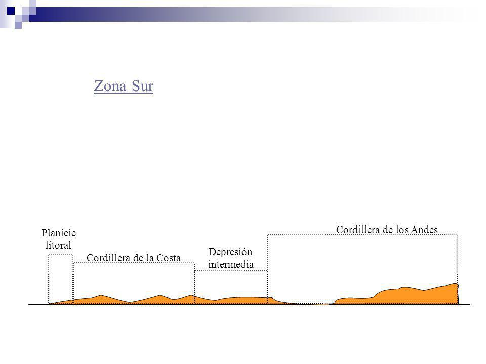 Zona Sur Cordillera de los Andes Planicie litoral Depresión intermedia