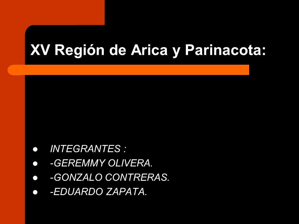 XV Región de Arica y Parinacota: