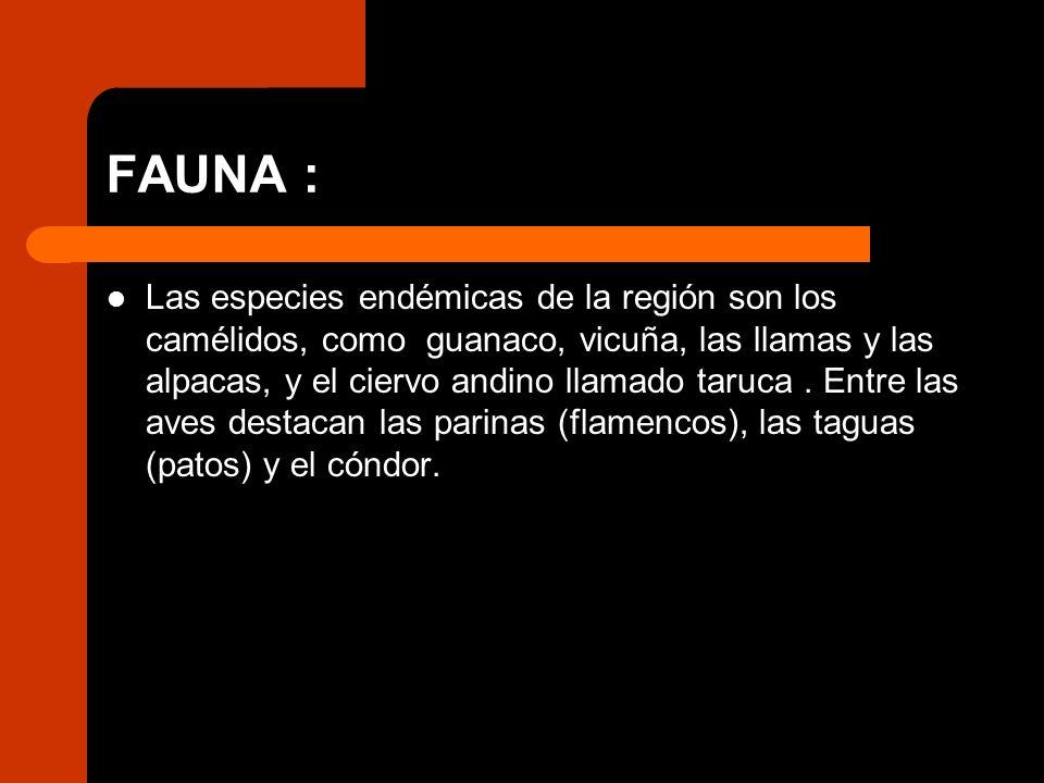 FAUNA :