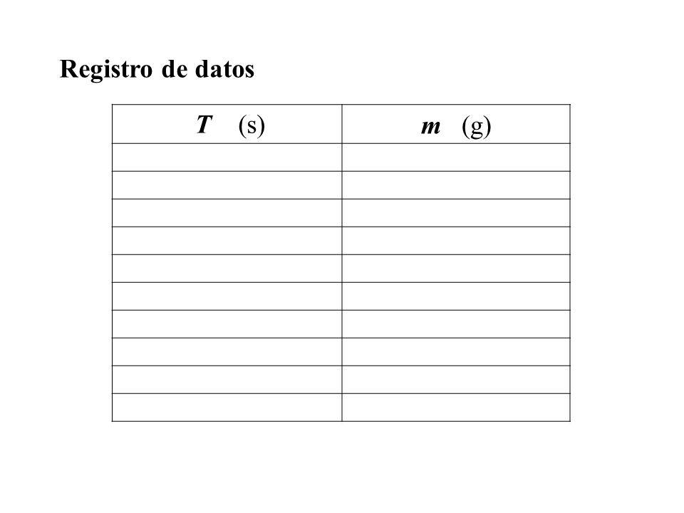 Registro de datos T (s) m (g)