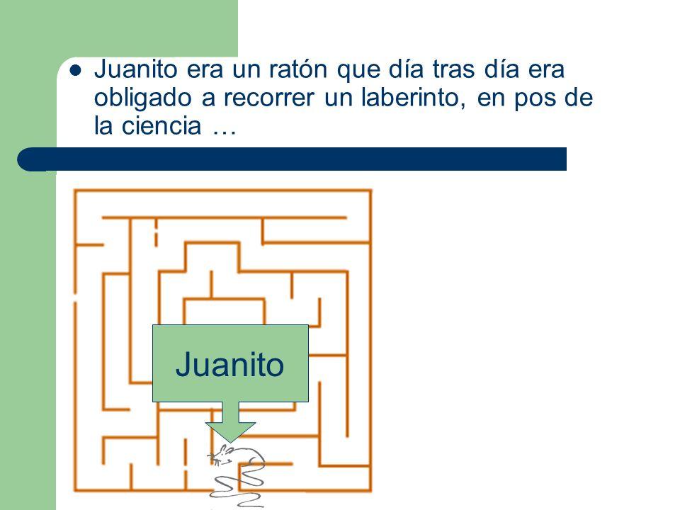 Juanito era un ratón que día tras día era obligado a recorrer un laberinto, en pos de la ciencia …