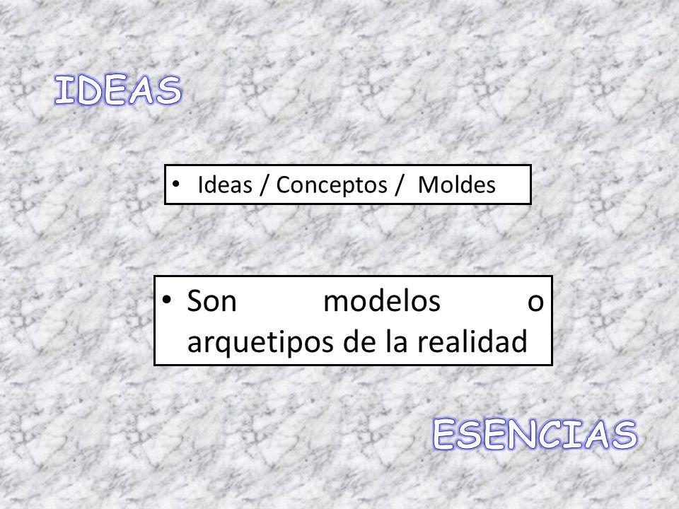 IDEAS ESENCIAS Son modelos o arquetipos de la realidad