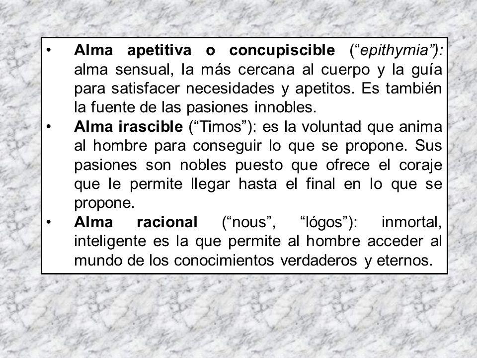 Alma apetitiva o concupiscible ( epithymia ): alma sensual, la más cercana al cuerpo y la guía para satisfacer necesidades y apetitos. Es también la fuente de las pasiones innobles.