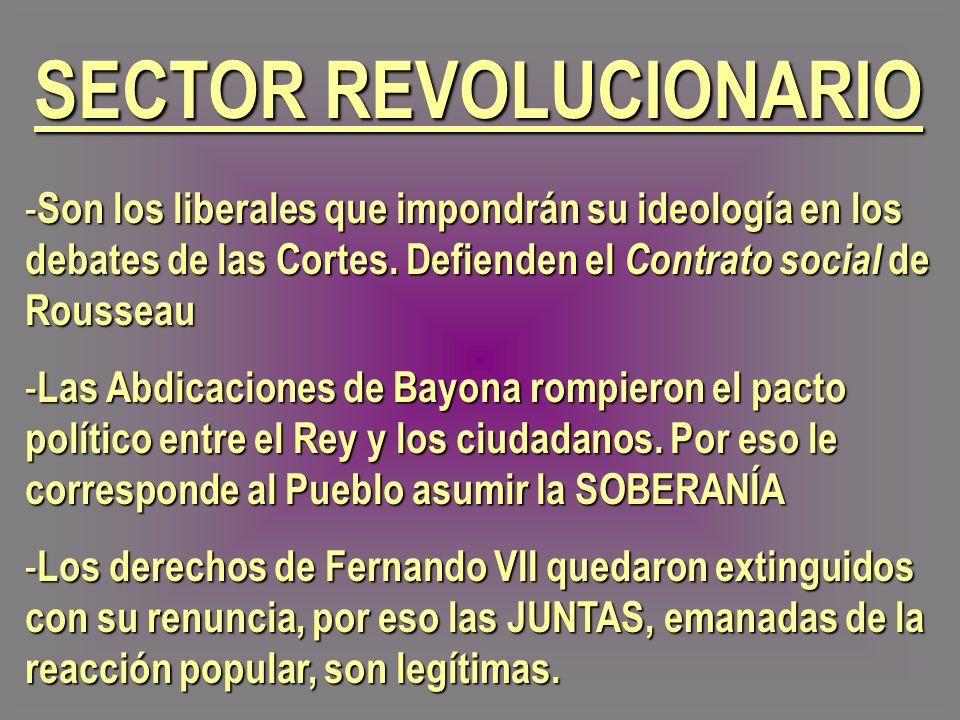 SECTOR REVOLUCIONARIO