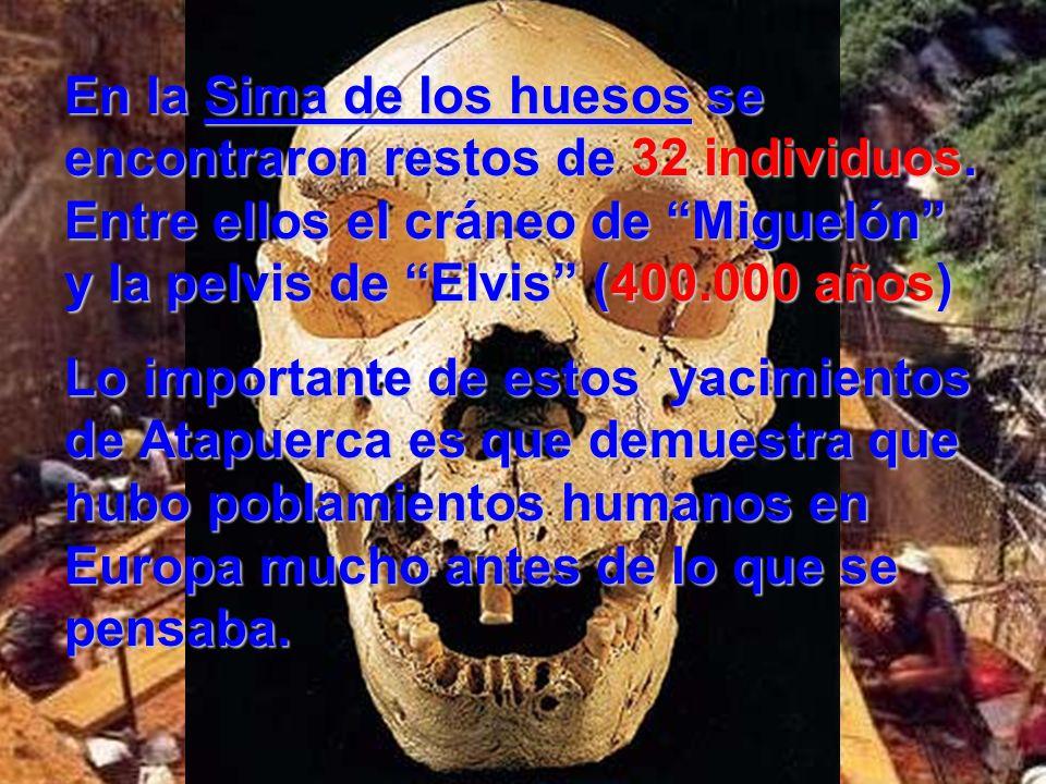 En la Sima de los huesos se encontraron restos de 32 individuos