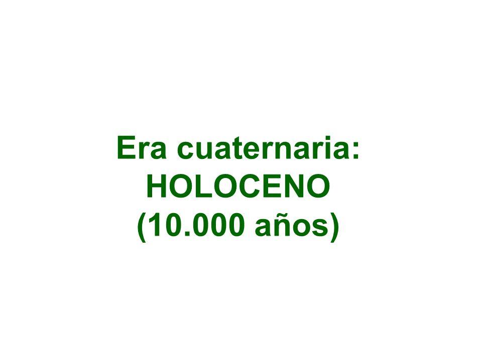 Era cuaternaria: HOLOCENO (10.000 años)