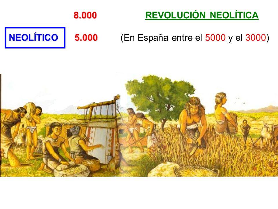 NEOLÍTICO 5.000 (En España entre el 5000 y el 3000)