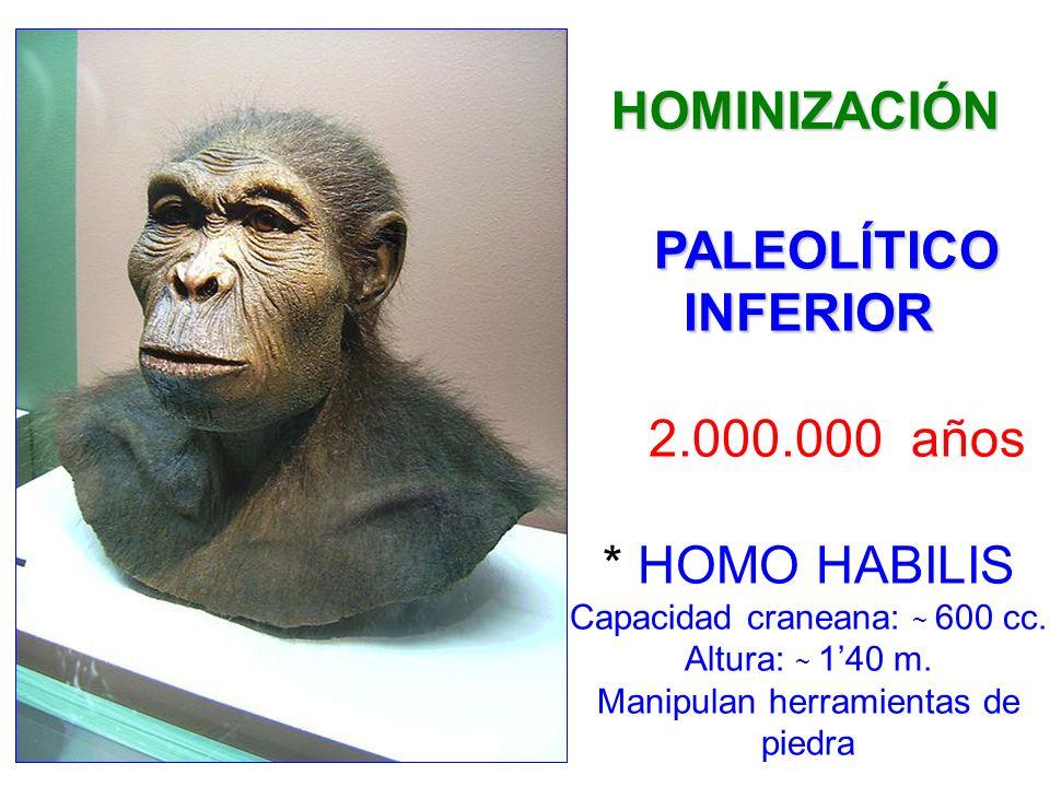 HOMINIZACIÓN PALEOLÍTICO INFERIOR. 2.000.000 años.