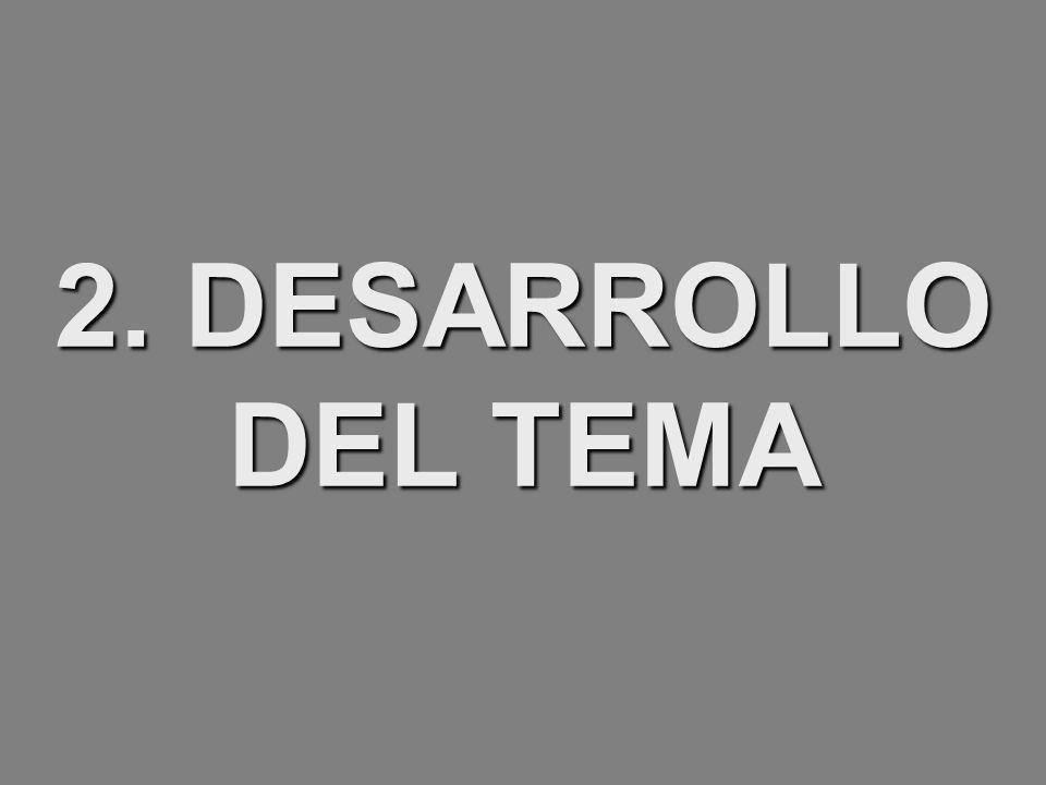 2. DESARROLLO DEL TEMA