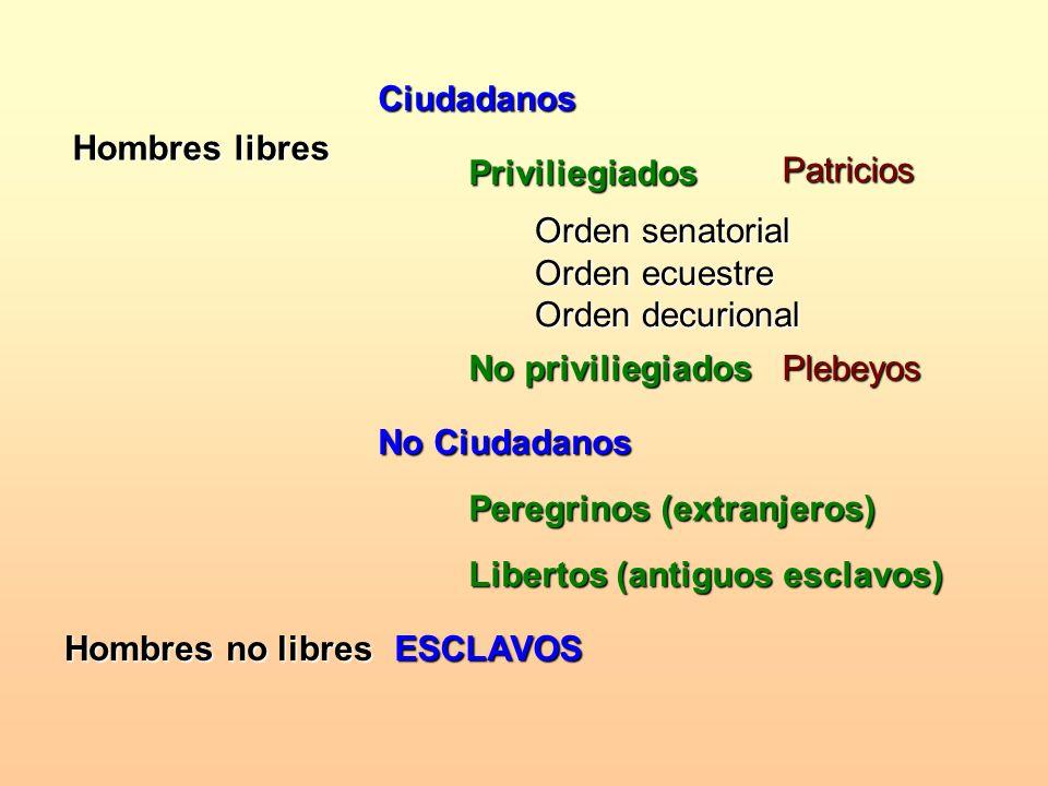Ciudadanos Hombres libres. Priviliegiados. Patricios. Orden senatorial Orden ecuestre Orden decurional.
