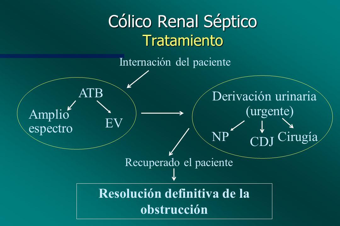 Cólico Renal Séptico Tratamiento