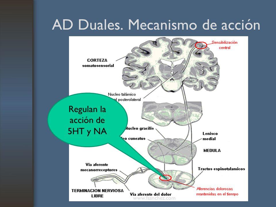 AD Duales. Mecanismo de acción