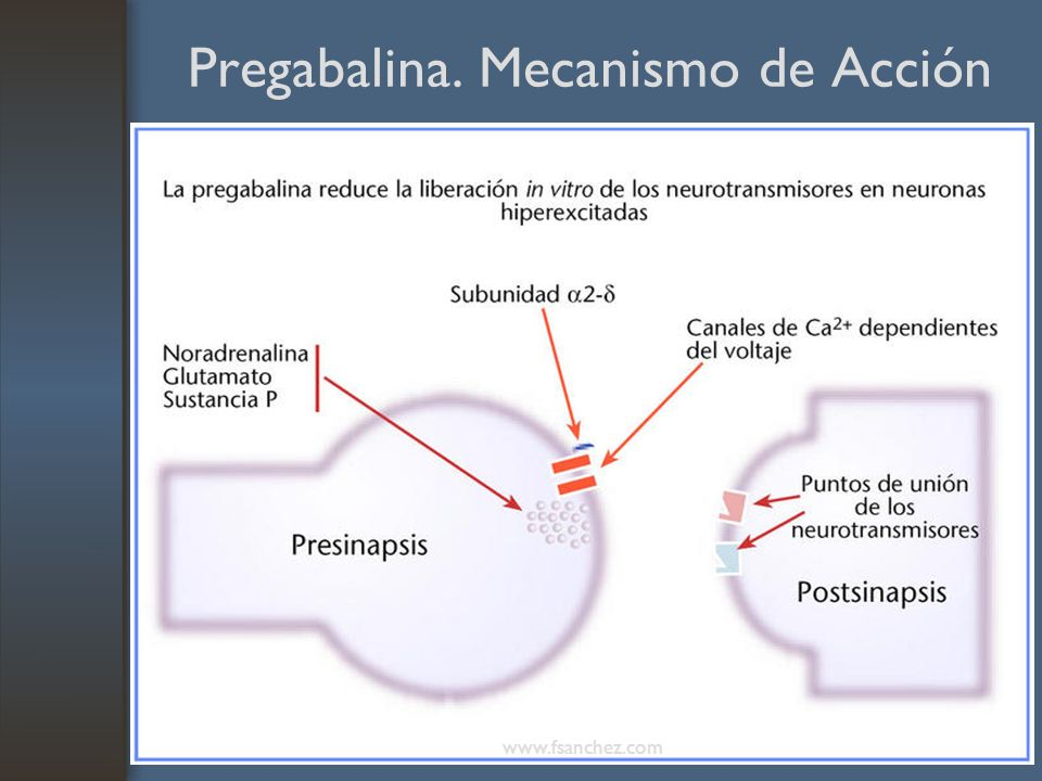 Pregabalina. Mecanismo de Acción