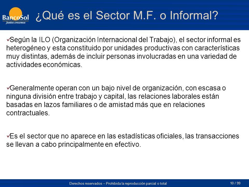 ¿Qué es el Sector M.F. o Informal