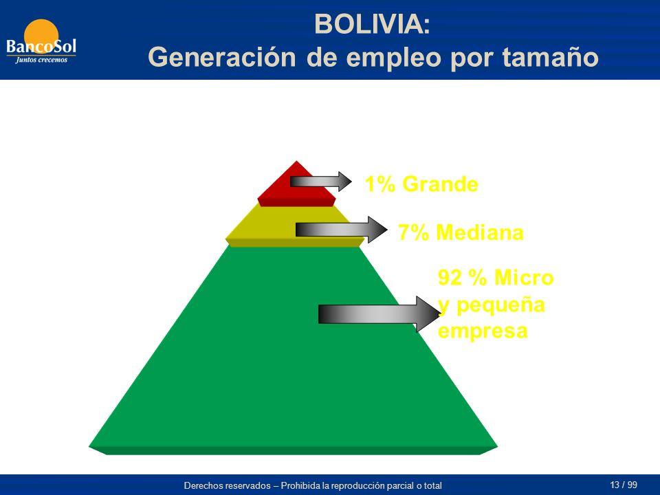 BOLIVIA: Generación de empleo por tamaño