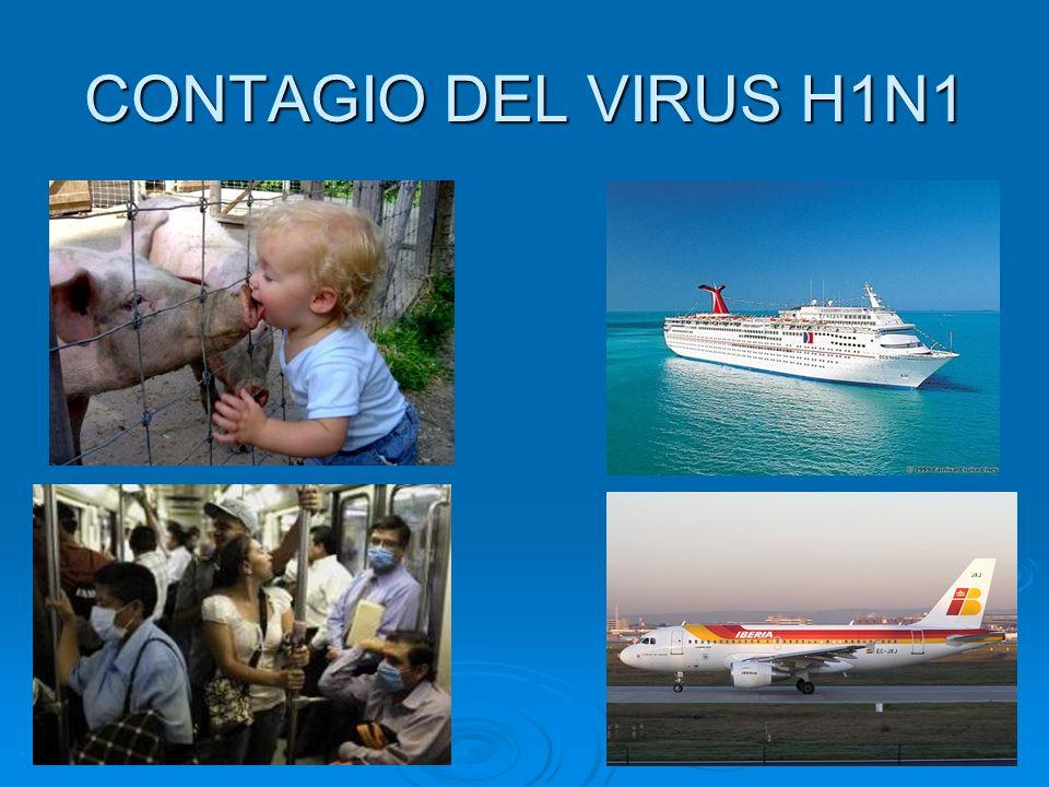 CONTAGIO DEL VIRUS H1N1