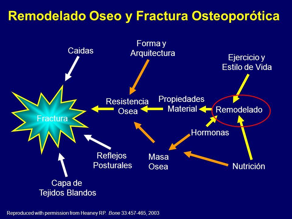 Remodelado Oseo y Fractura Osteoporótica