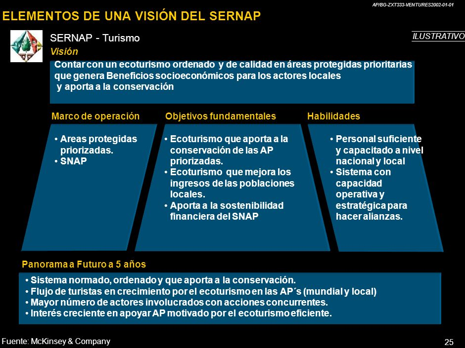 ELEMENTOS DE UNA VISIÓN DEL SERNAP
