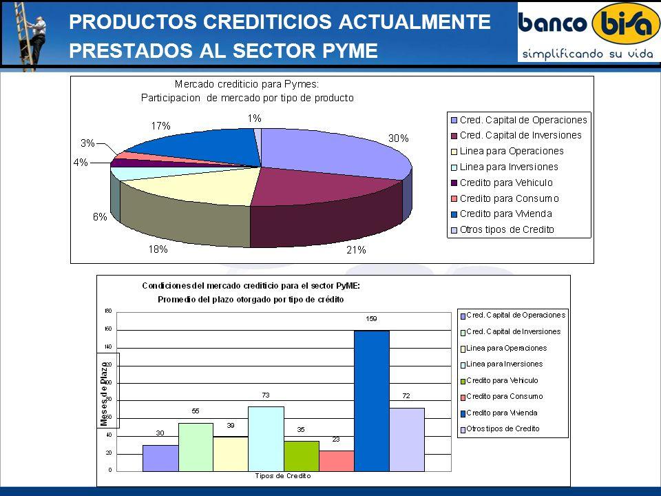 PRODUCTOS CREDITICIOS ACTUALMENTE PRESTADOS AL SECTOR PYME