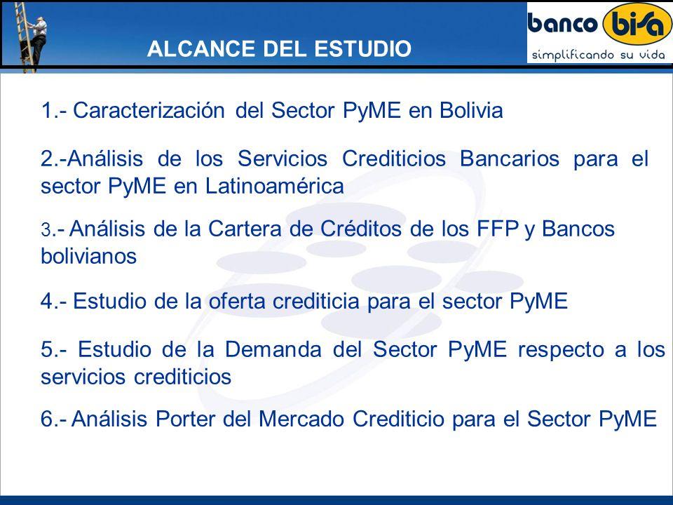 1.- Caracterización del Sector PyME en Bolivia
