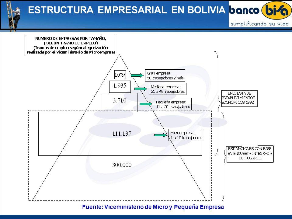 ESTRUCTURA EMPRESARIAL EN BOLIVIA