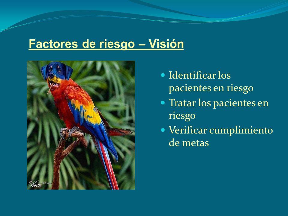 Factores de riesgo – Visión