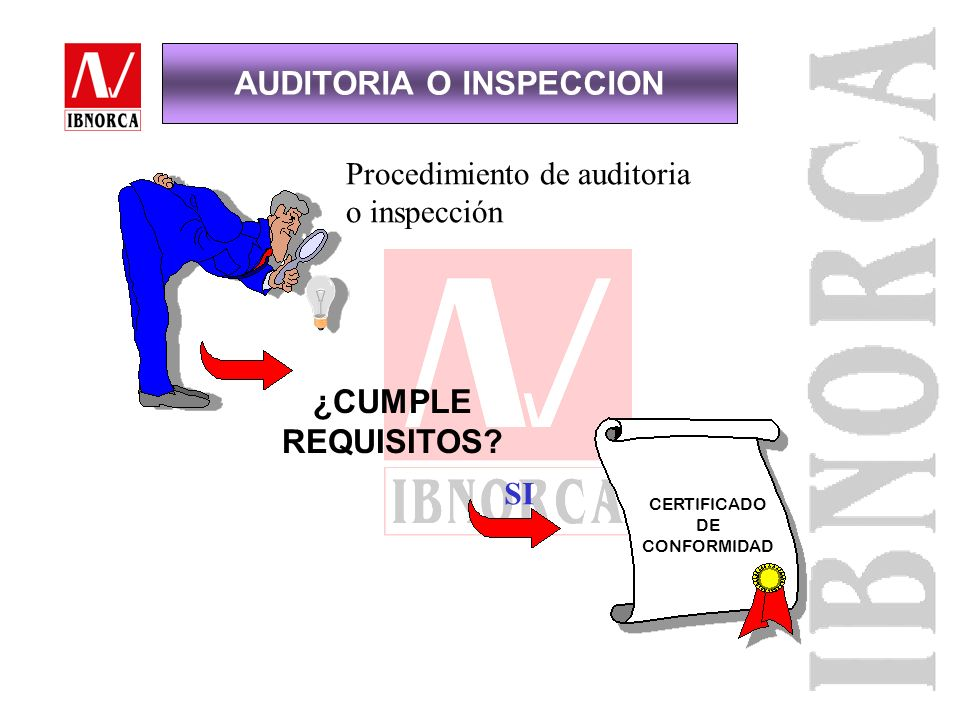 AUDITORIA O INSPECCION
