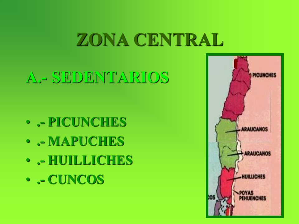 ZONA CENTRAL A.- SEDENTARIOS .- PICUNCHES .- MAPUCHES .- HUILLICHES