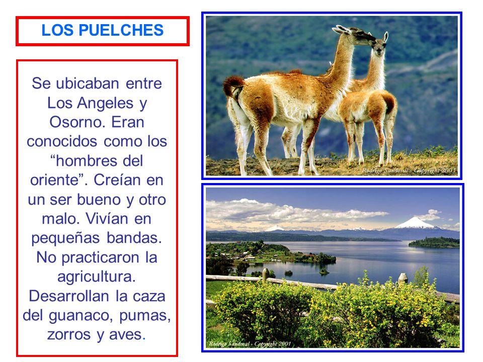 LOS PUELCHES