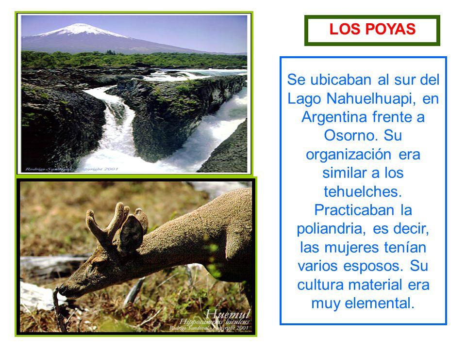 LOS POYAS