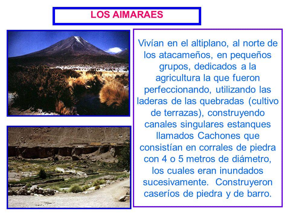LOS AIMARAES
