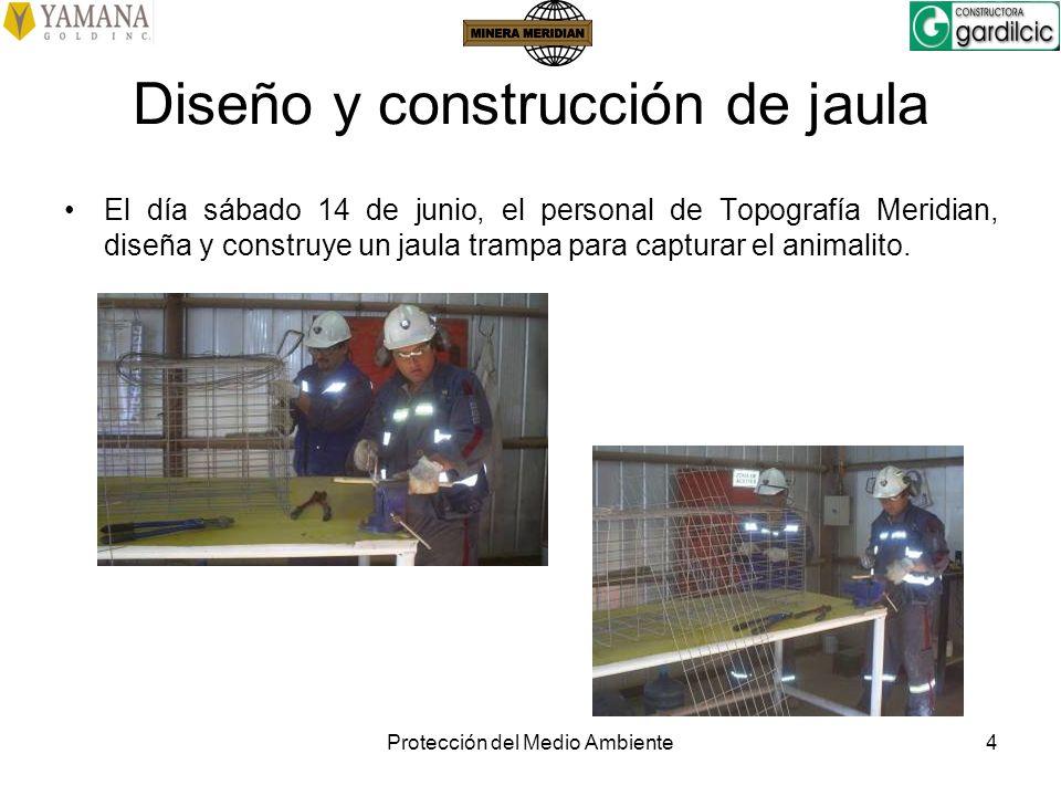 Diseño y construcción de jaula