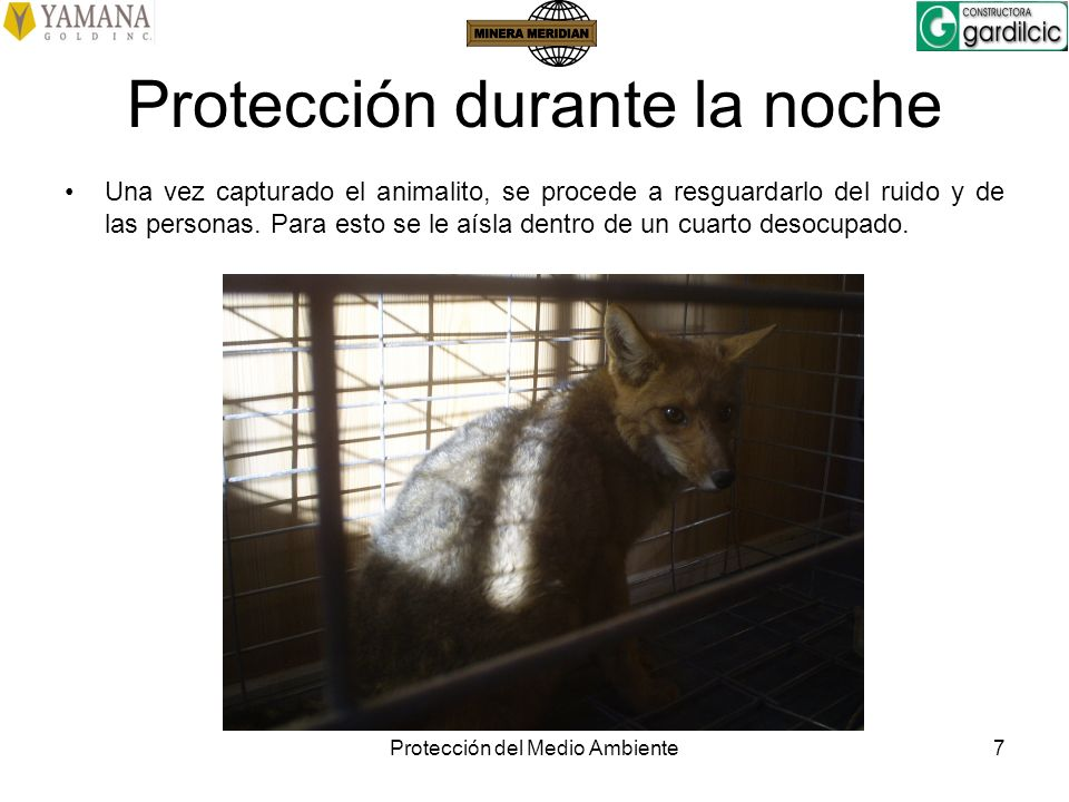 Protección durante la noche
